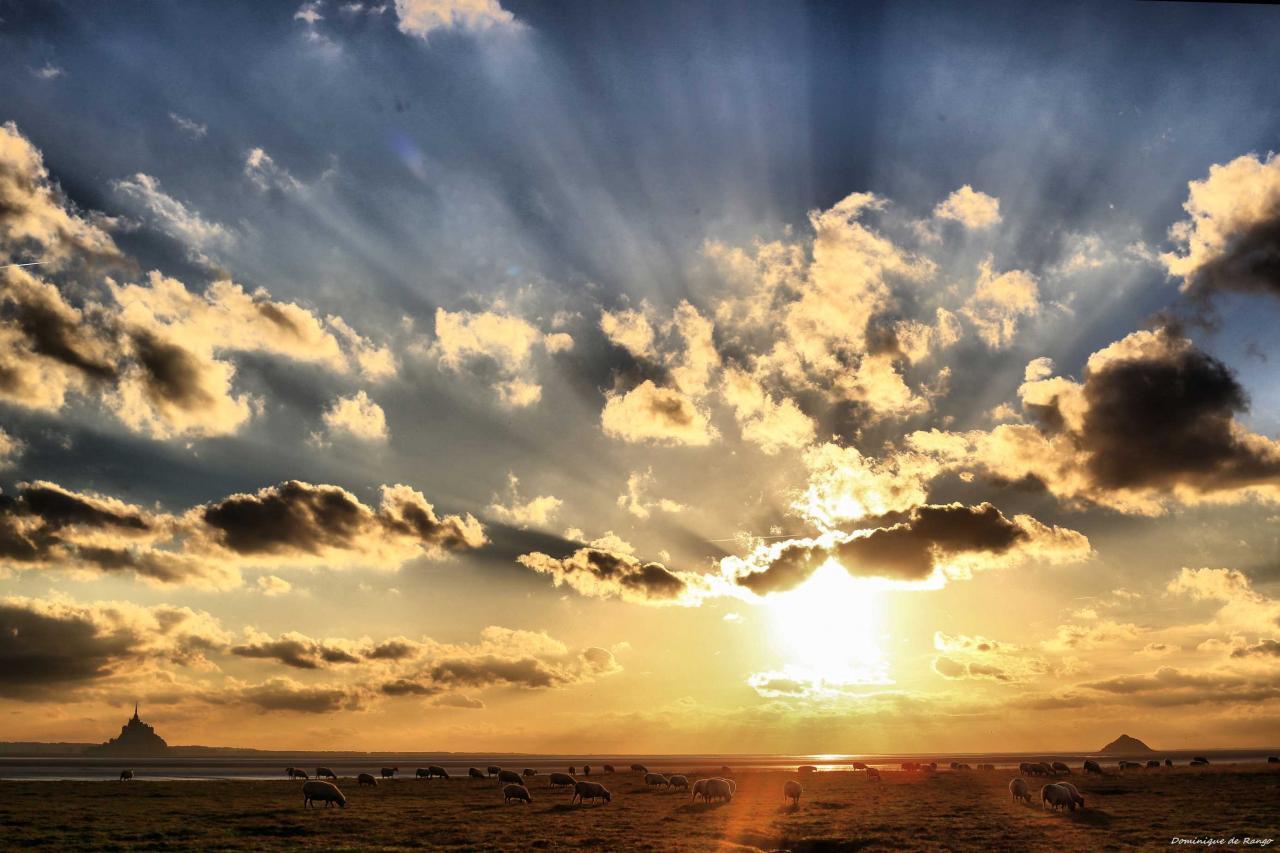Le soleil se couche sur l'herbu