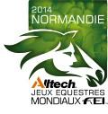 Logo jeux equestre mondiaux